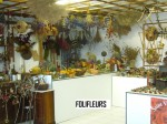 FOLIFLEURS